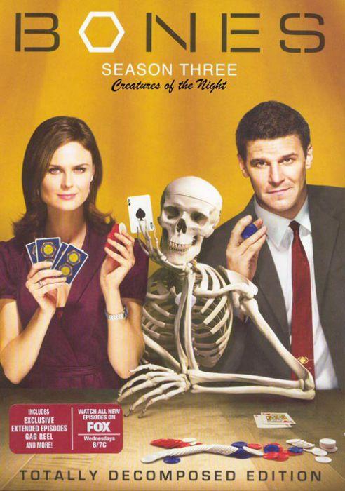 Kości / Bones {Sezon 3} (2007) PL.TVRiP.XViD-NN / Lektor PL