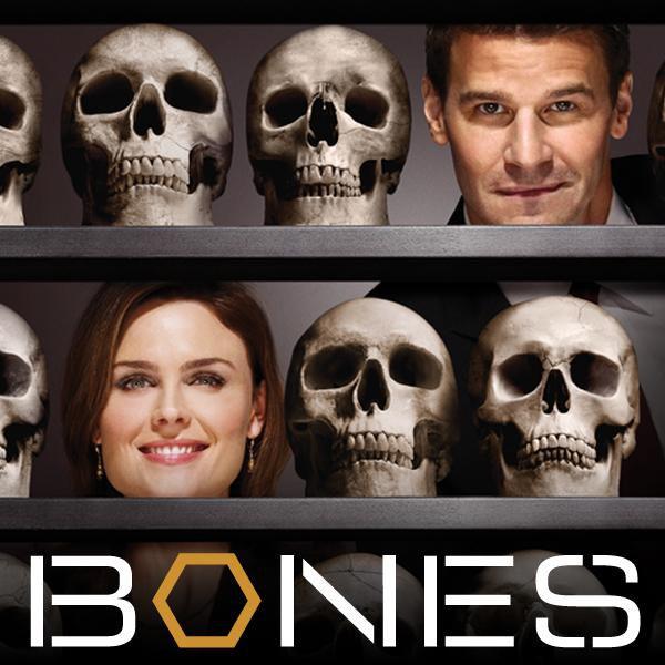 Kości / Bones {Sezon 7} (2011) PL.TVRiP.XViD-NN / Lektor PL